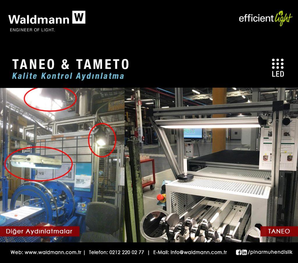 waldmann tameto